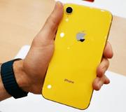 iPhone XR начнут собирать в Индии.