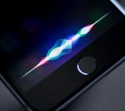 Apple купила очередной стартап.